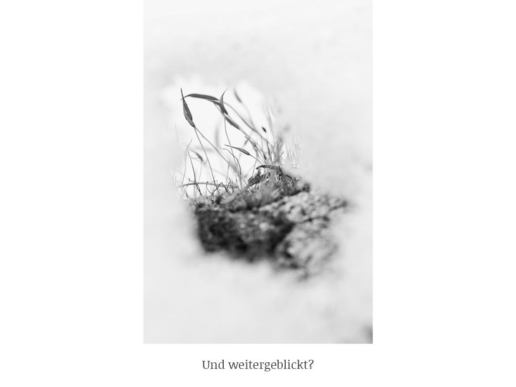 Joachim Brocks_g-art-en_web-neu_7