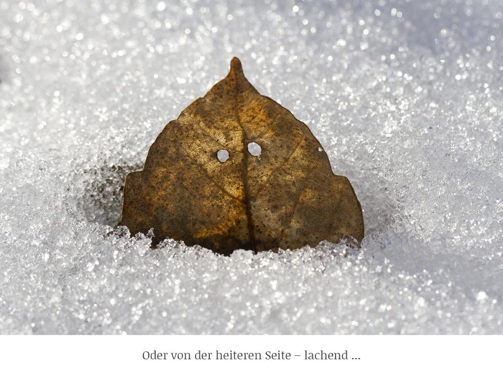 Joachim Brocks_g-art-en_web-neu_16
